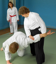 Teaching Aikido